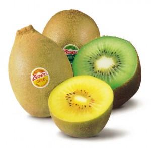 Kiwifruit Species